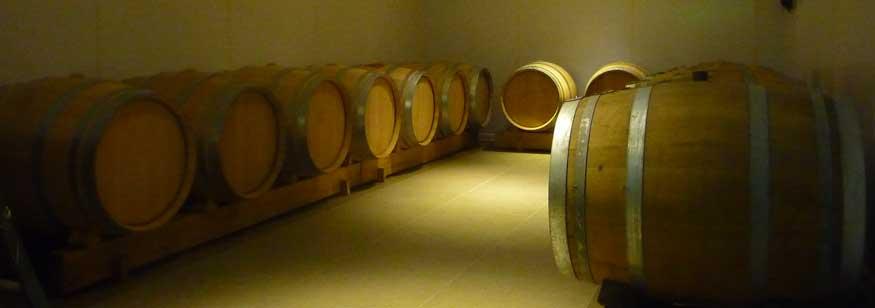 Champagne Trichet Lorain à Montbré - Chai