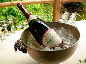 Champagne Trichet Lorain - Magnum Brut 1er cru