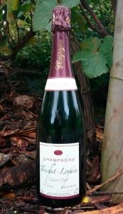 Champagne Trichet Lorain - Esprit Brut 1er cru